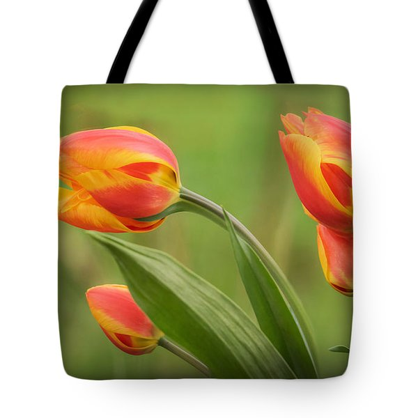 Wind Blown Tulips Tote Bag by Angie Vogel