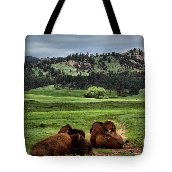 Wind Cave Bison Tote Bag
