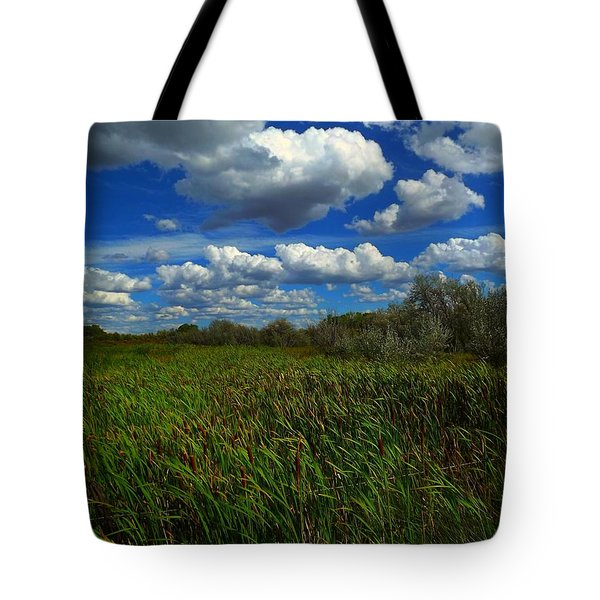 Wind In The Cattails Tote Bag by Annie Gibbons