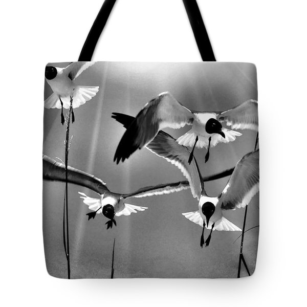 Tote Bag featuring the photograph Wind Swept Bw by Jan Amiss Photography
