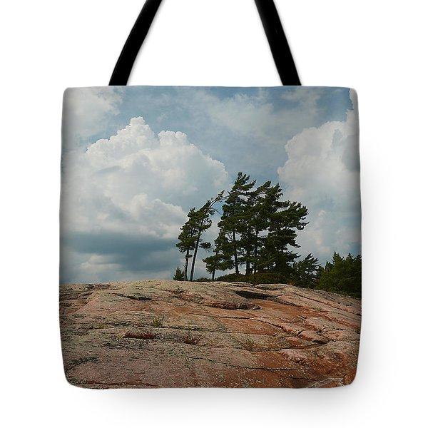 Wind Swept Trees On Rocks Tote Bag