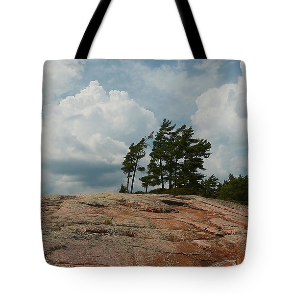 Wind Swept Trees On Rocks Tote Bag
