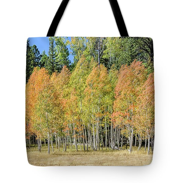 Windblown Aspen Tote Bag