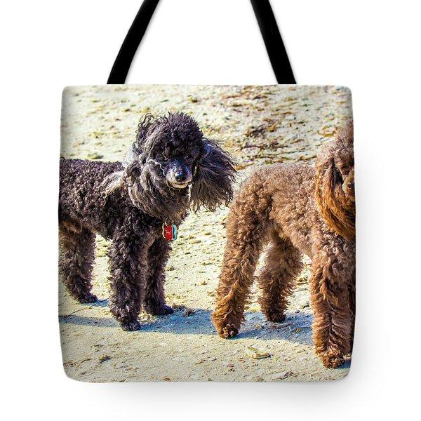 Windblown Beach Bums Tote Bag