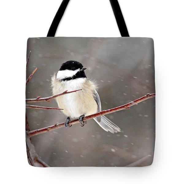 Windblown Chickadee Tote Bag by Debbie Oppermann