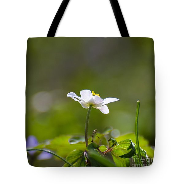 Tote Bag featuring the photograph Windflower Portrait by Kennerth and Birgitta Kullman