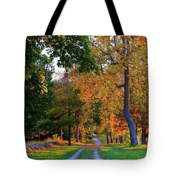 Winding Road In Autumn Tote Bag
