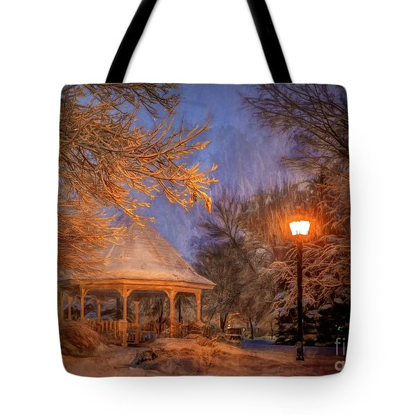 Windom Park Snowstorm Tote Bag