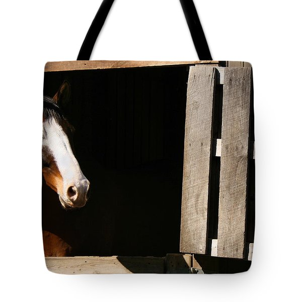 Tote Bag featuring the photograph Window by Angela Rath