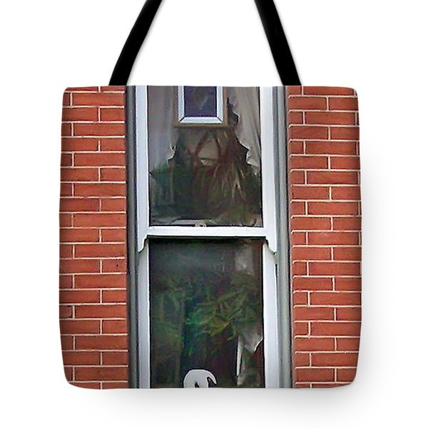 Tote Bag featuring the photograph Window Dressing by Brian Wallace