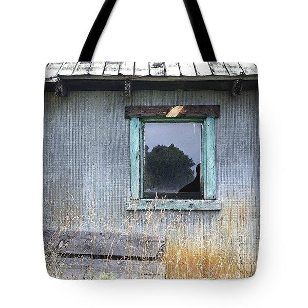 Window Framed In Aqua Tote Bag by Glennis Siverson