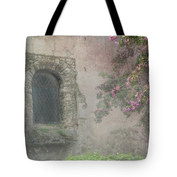 Window In The Wall Tote Bag