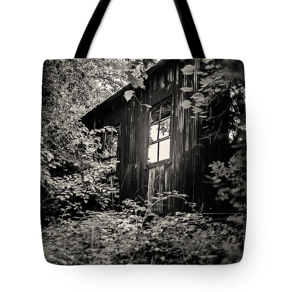 Window In The Woods Tote Bag