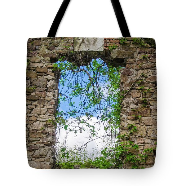 Tote Bag featuring the photograph Window Ruin At Bridgetown Millhouse Bucks County Pa by Bill Cannon