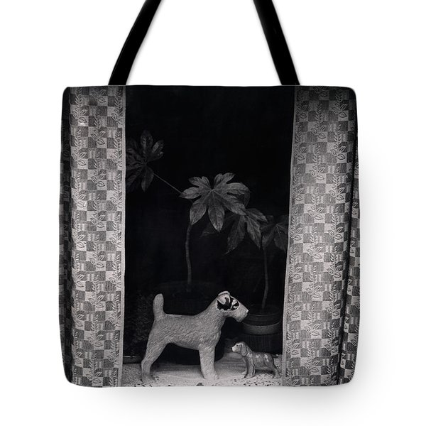 Window Scene Tote Bag by Charles Stuart