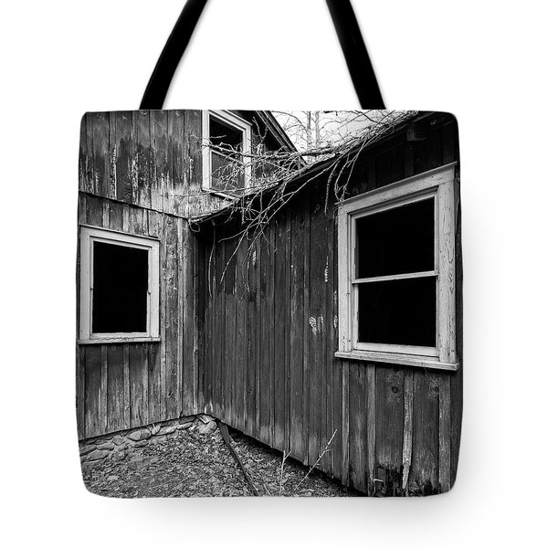 Tote Bag featuring the photograph Windows 3 by Alan Raasch