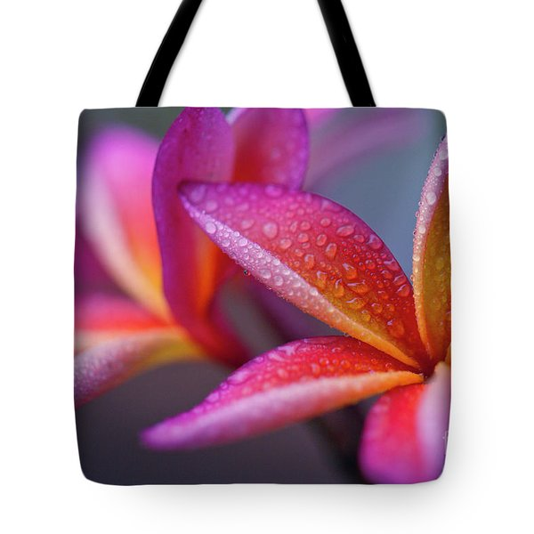 Tote Bag featuring the photograph Windows Into Nature by Sharon Mau