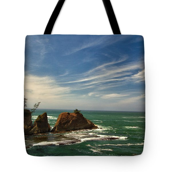 Windswept Day Tote Bag by Tom Kelly