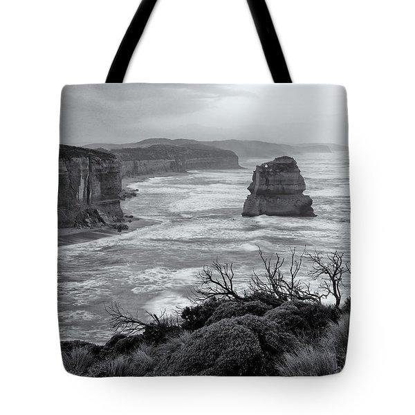 Windswept Tote Bag