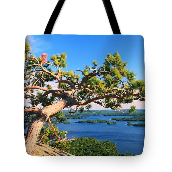 Windswept Pine On Rattlesnake Mountain Tote Bag by Roupen  Baker
