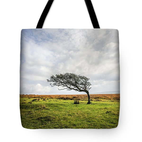 Windswept Tree Tote Bag