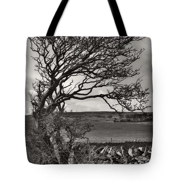Windswept Tree In Winter Tote Bag