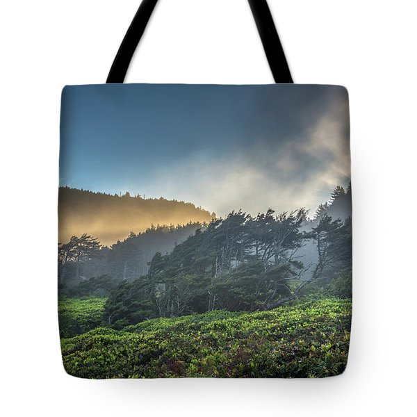 Windswept Trees On The Oregon Coast Tote Bag