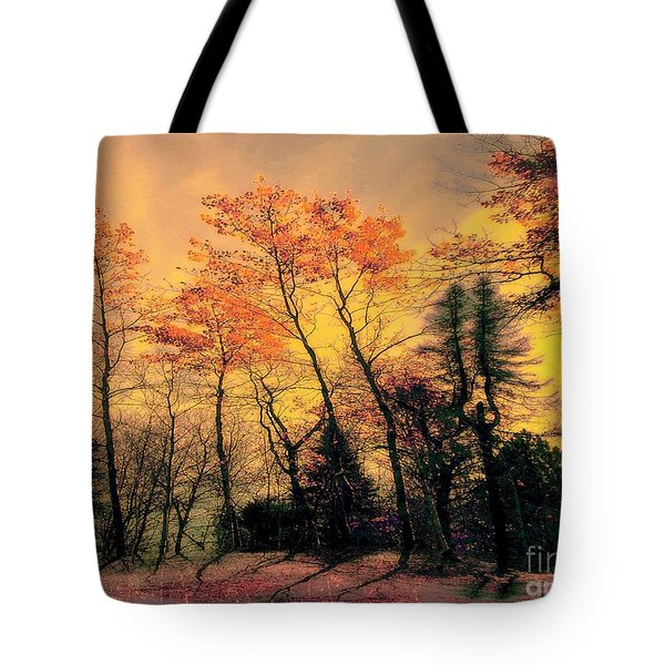 Tote Bag featuring the photograph Windy  by Elfriede Fulda