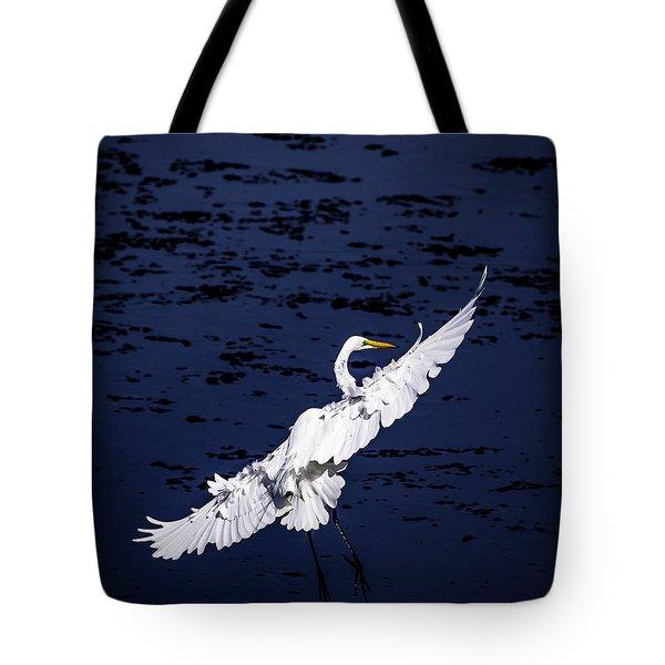 Windy Flight Tote Bag