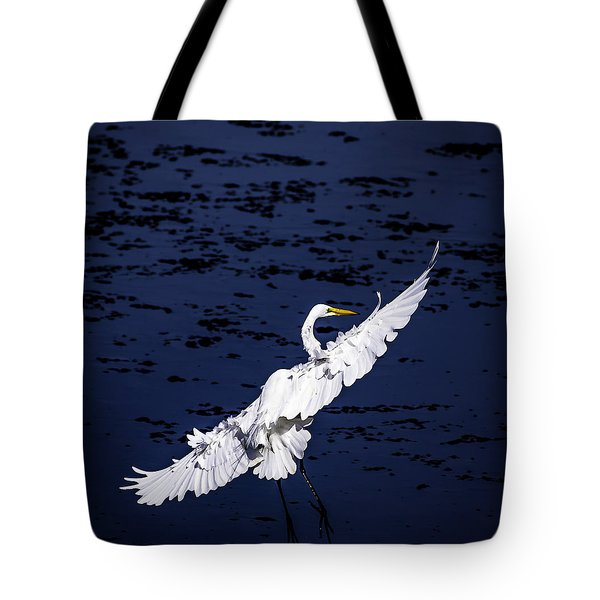 Windy Flight Tote Bag