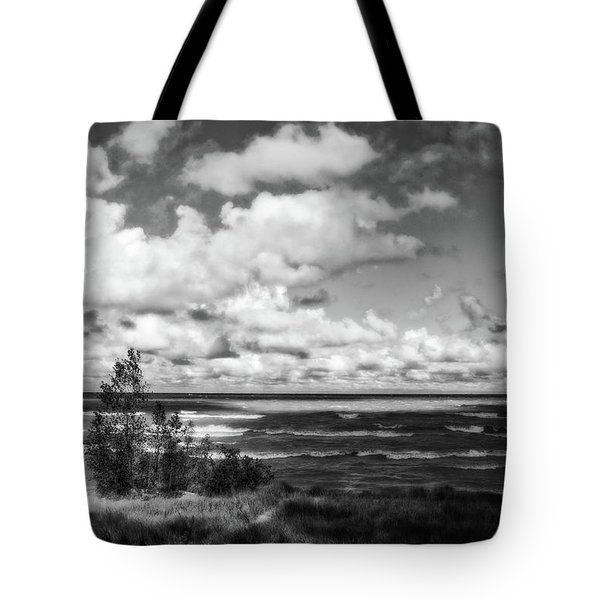 Tote Bag featuring the photograph Windy Morning On Lake Michigan by Michelle Calkins