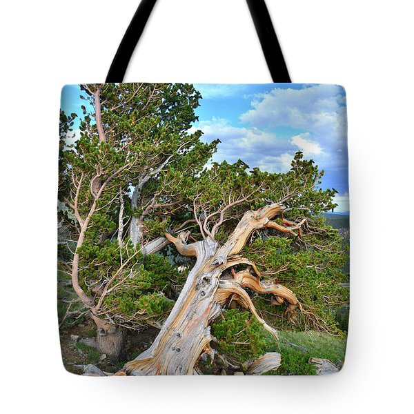Windy Ridge Bristlecone Pines Tote Bag