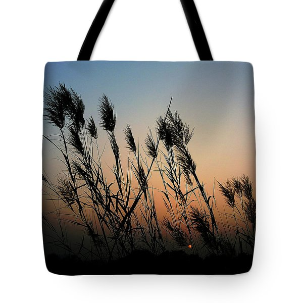 Windy Sunset Tote Bag