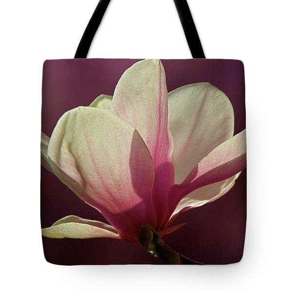 Wine And Cream Magnolia Blossom Tote Bag by Byron Varvarigos