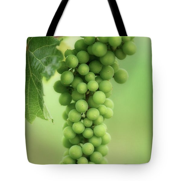 Wine Before Picture Tote Bag by Lisa Knechtel