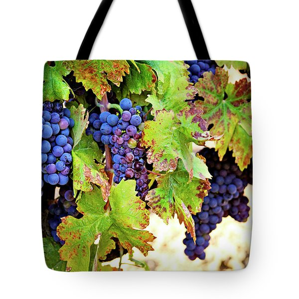 Wine Country - Napa Valley California Photography Tote Bag