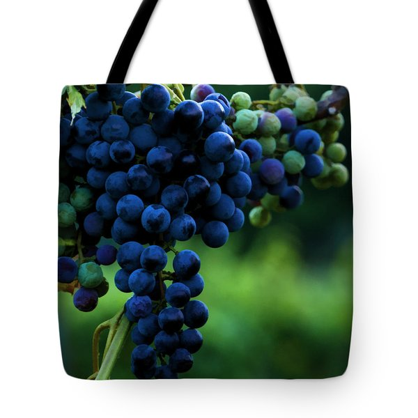 Wine On A Vine Tote Bag by Ann Bridges
