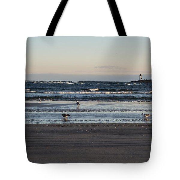 Wingaersheek Beach Seagulls At Sunrise Tote Bag