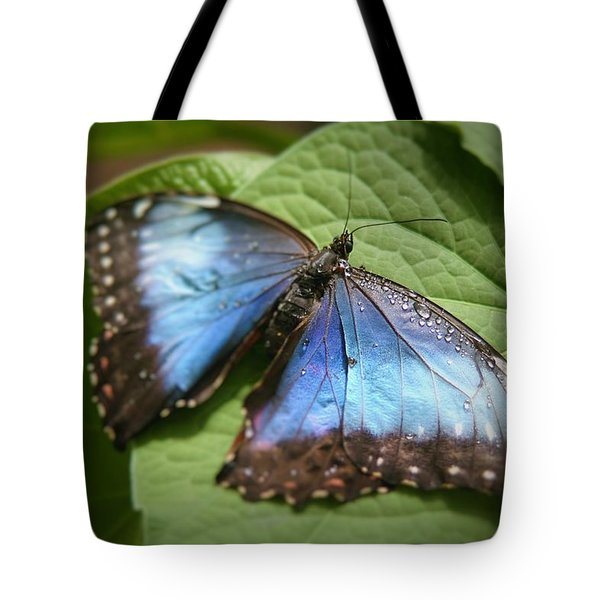 Wingdrops Tote Bag by David S Reynolds
