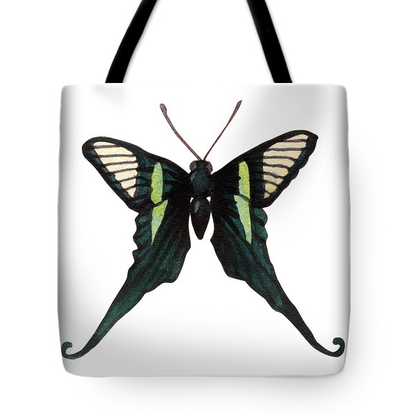 Tote Bag featuring the painting Winged Jewels 3, Watercolor Tropical Butterfly With Curled Wing Tips by Audrey Jeanne Roberts