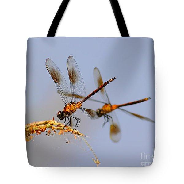 Wingman Tote Bag by Robert Frederick