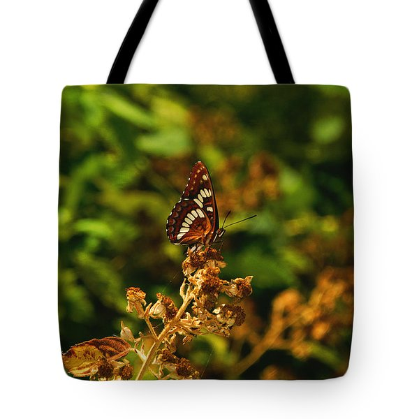 Wingo Butterfly Tote Bag