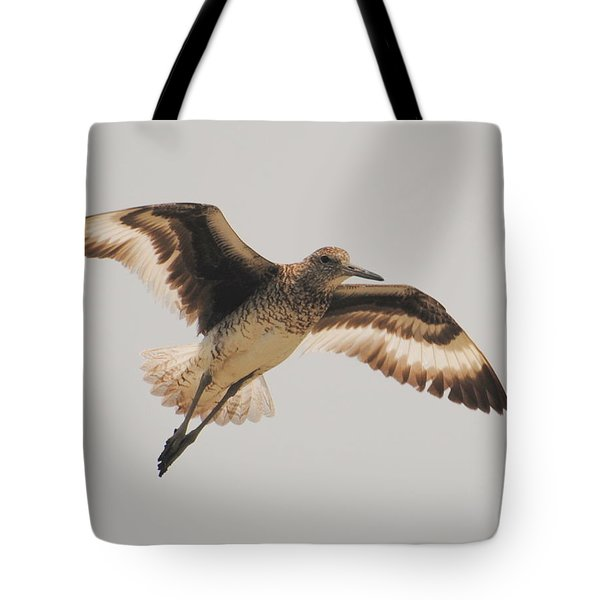Wings Of A Willett  Tote Bag