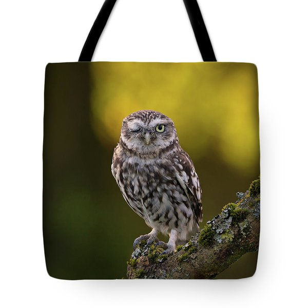Winking Little Owl Tote Bag