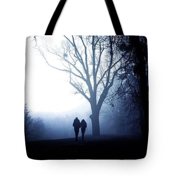 Winter Afternoon II Tote Bag