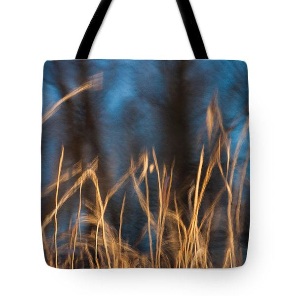 Tote Bag featuring the photograph Winter Afternoon Impressions  by Davorin Mance