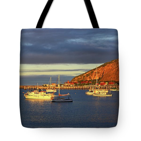 Tote Bag featuring the photograph Winter Afternoon Sun At Friendly Bay by Nareeta Martin