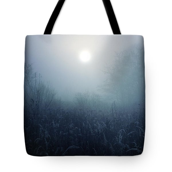Winter Afternoon - Poland Tote Bag