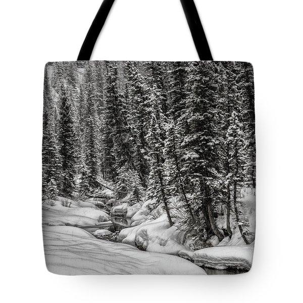 Winter Alpine Creek II Tote Bag by Brad Allen Fine Art