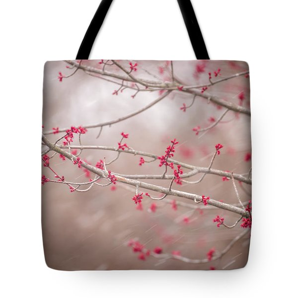 Tote Bag featuring the photograph Winter And Spring by Terry DeLuco